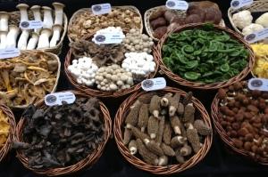 ee-CPMA-mushrooms