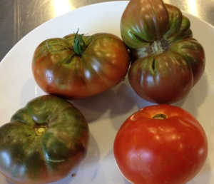 My backyard tomatoes- Black Krim and Matina
