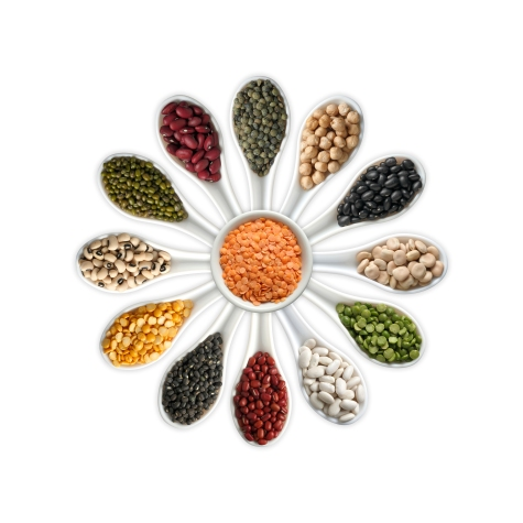 International Year of Pulses (IYP 2016)